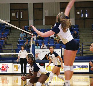 Volleyball team rides winning streak