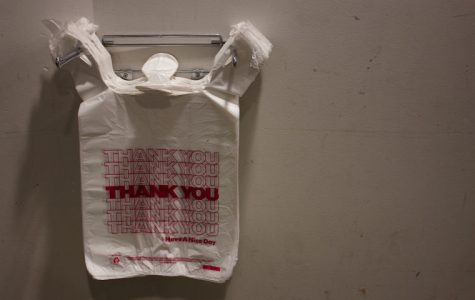 Beginning on March 1, the City of Austin Plastic Bag Ban will go into effect.