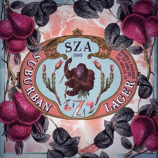 SZA's first album showcases her potential for a unique style.