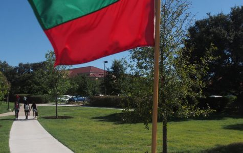 Flags around campus advocate for domestic violence awareness