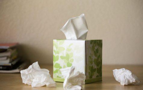 Austinites experience allergies at unprecedented levels