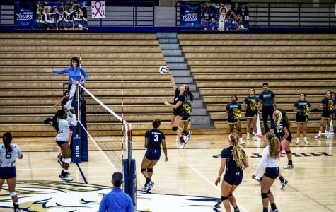 Volleyball sweeps in regular season finale, advance to conference tournament