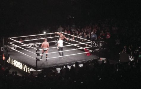 Fun, fierce wrestling match surpasses audience expectations