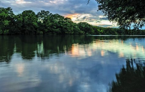 Best places to stay active in Austin