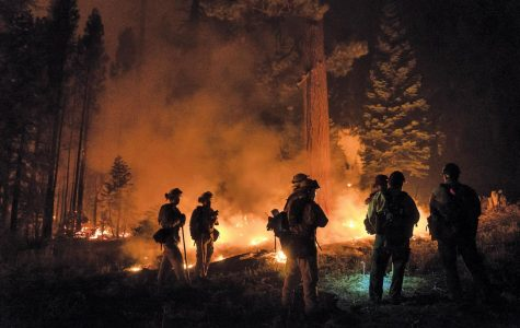 On Aug. 4, a national emergency was declared because of the severity of the wildfires.