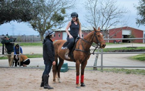 SEU welcomes new polo club, open to new and experienced members