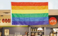 Straight pride diminishes positive contributions LGBTQ+ community brings