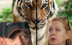 'Tiger King' brings out the claws in sensational seven part series