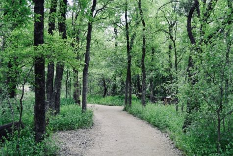 Located off of North Lamar, this trail is about 15 minutes from downtown. This is a great place for mountain biking, hiking or taking your dog for a walk. If that doesn't sound appealing to you, you and your friends can play a socially distanced game of baseball at one of the many fields available in the park. If you want to feel refreshed after a good hike, keep an eye out for the Kona Ice snow cone truck.