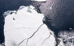 Sea ice reflects 50% to 70% of incoming solar radiation while the dark ocean surface only reflects 6%, so melting sea ice is a self-reinforcing feedback.